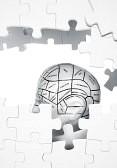 puzzle mental